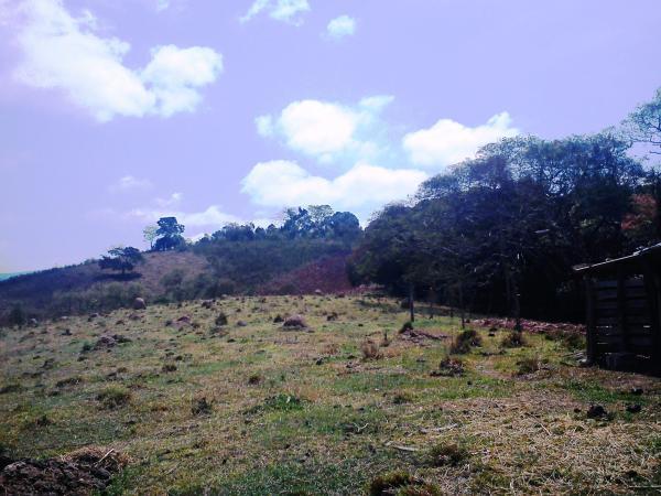 Casa, Rural, Jesuania (190) - Foto 10