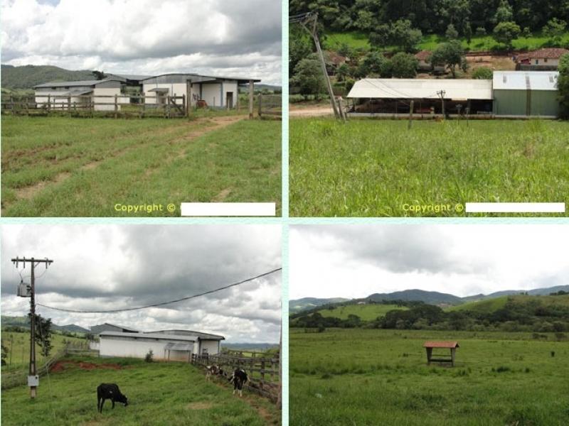 Sandra Reis Imóveis - Casa, 720 Ha, Lambari (227)