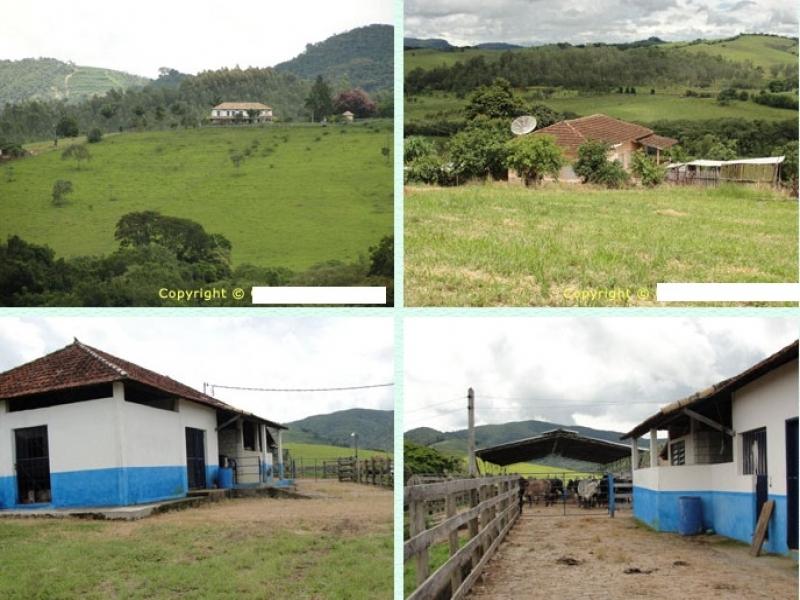 Sandra Reis Imóveis - Casa, 720 Ha, Lambari (227) - Foto 3