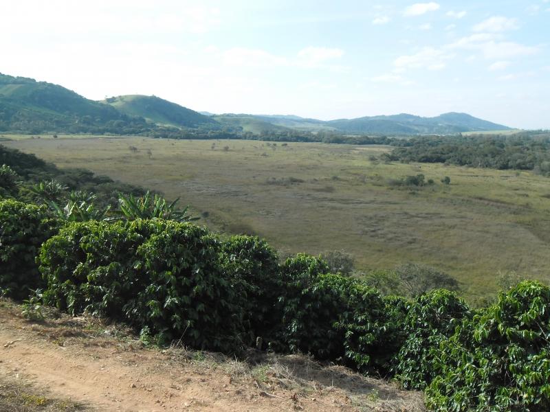 Sandra Reis Imóveis - Casa, Faz. 5 Km de Lambari - Foto 9
