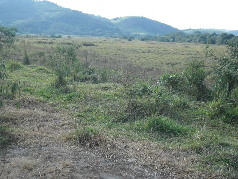 Sandra Reis Imóveis - Casa, Faz. 5 Km de Lambari - Foto 4