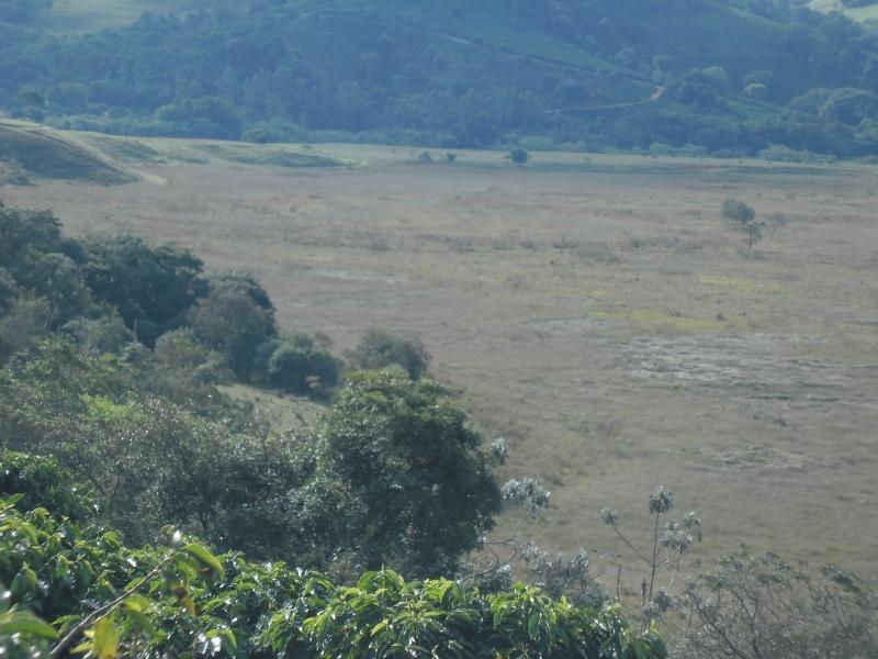 Sandra Reis Imóveis - Casa, Faz. 5 Km de Lambari - Foto 12