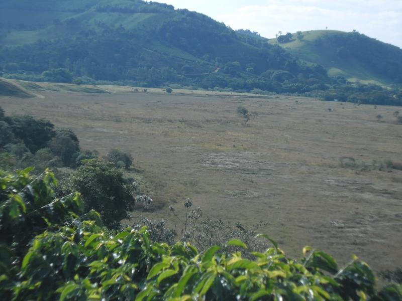Sandra Reis Imóveis - Casa, Faz. 5 Km de Lambari - Foto 16